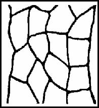 flagstone-roll-stencils-artcrete-logo-a-concrete-supplies-indianapolis-noblesville-kokomo-carmel-anderson-fishers-greenwood-lafayette-indy-contractor-supplies.png